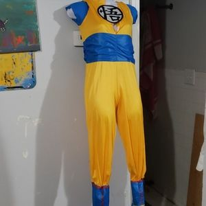 Costumes - Dragon ball Z costume